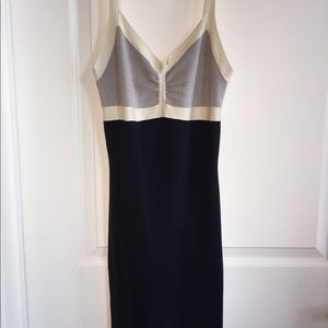 BCBG Knit Dress